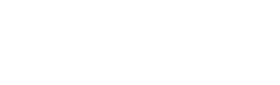 Bistech White Logo